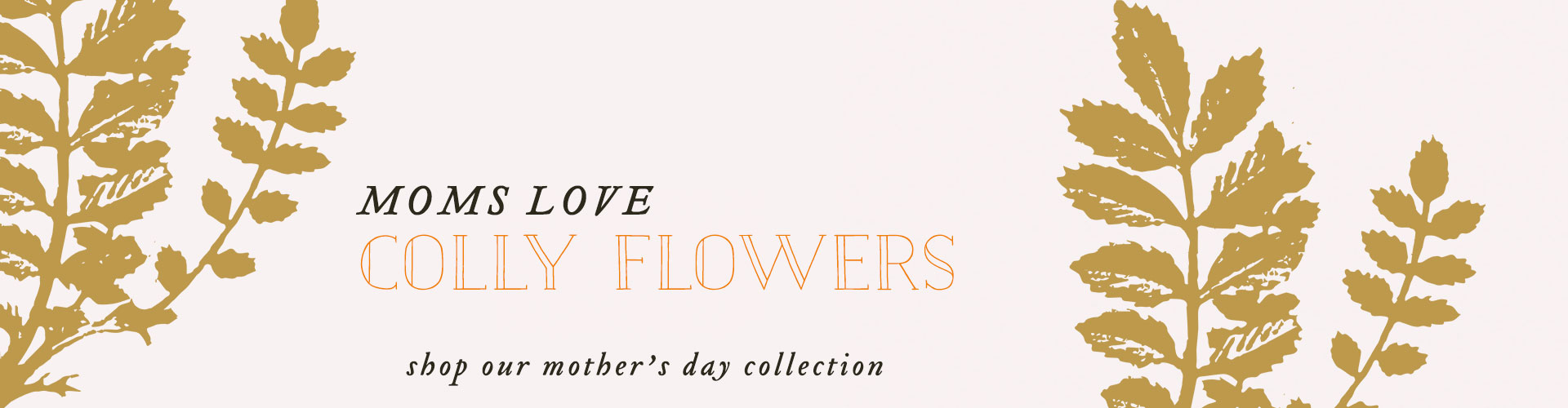morristown nj flower delivery | colly flowers