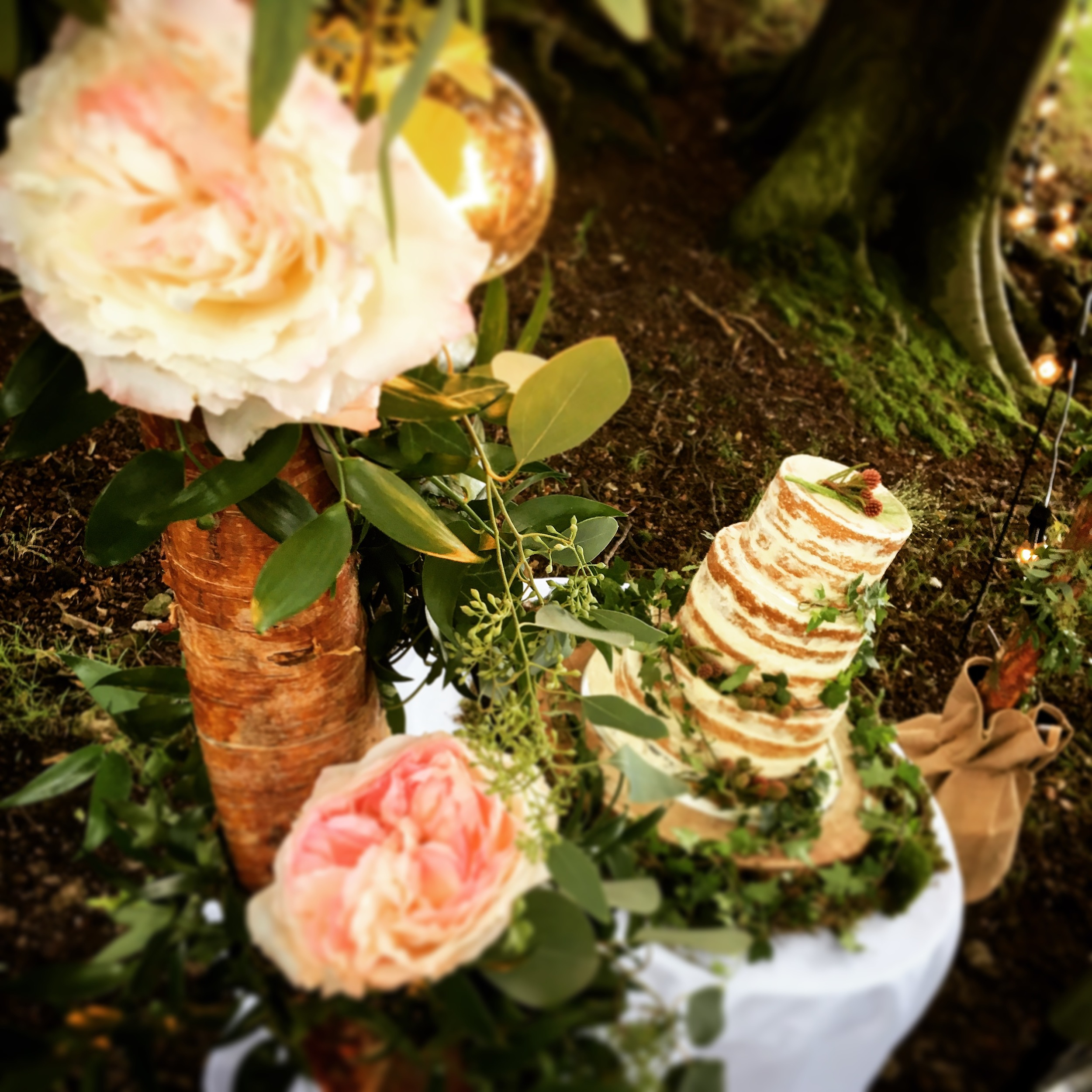 Now our Wooden Light Arch just frames that cake by Bloomsbury Cakes amazingly well !! stunning