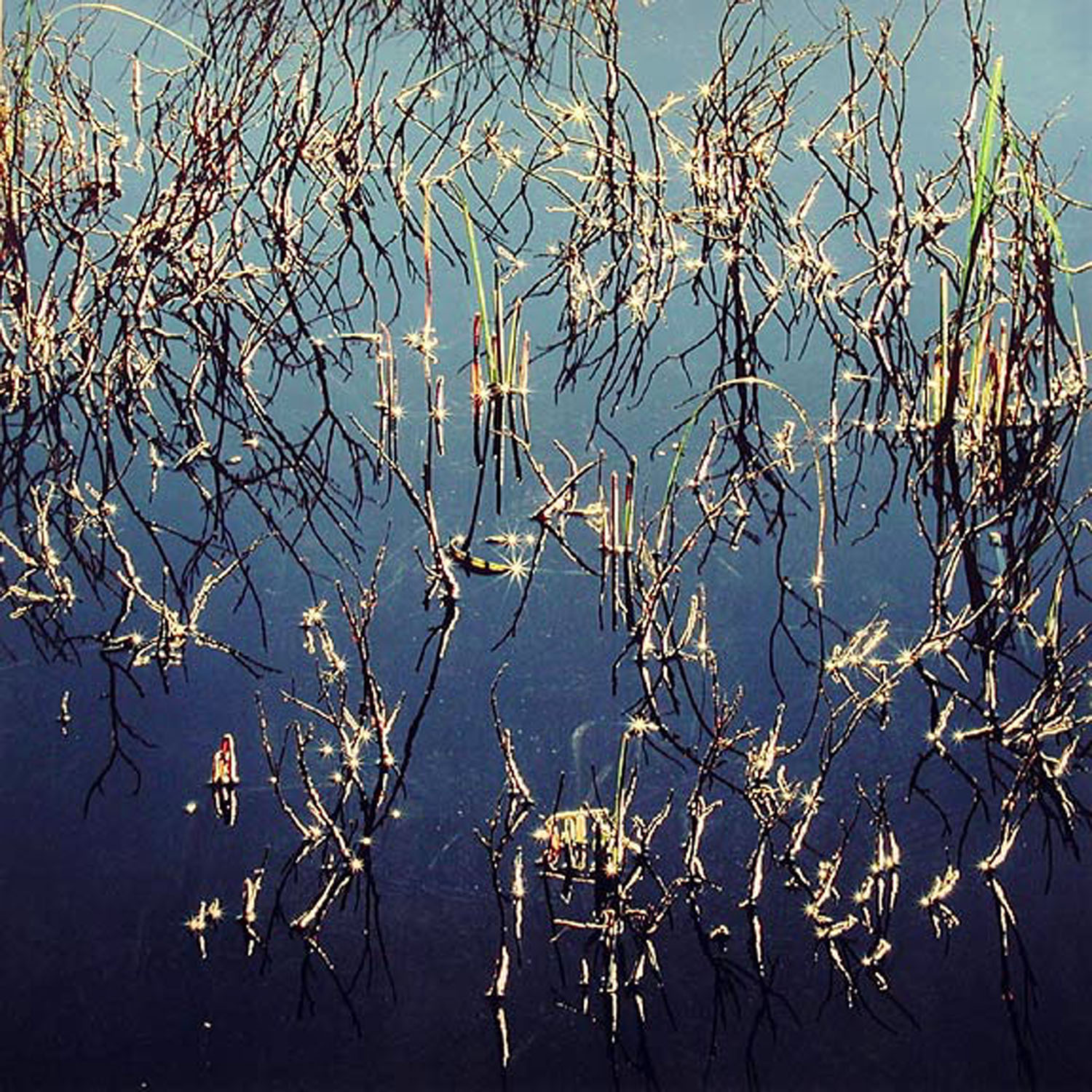 """Christopher Burkett """"Beaver Pond, Ice, and Sunstars,"""" Colorado     Cibachrome Photograph     Available in 20"""" x 20"""", 30"""" x 30"""", and 40"""" x 40"""""""