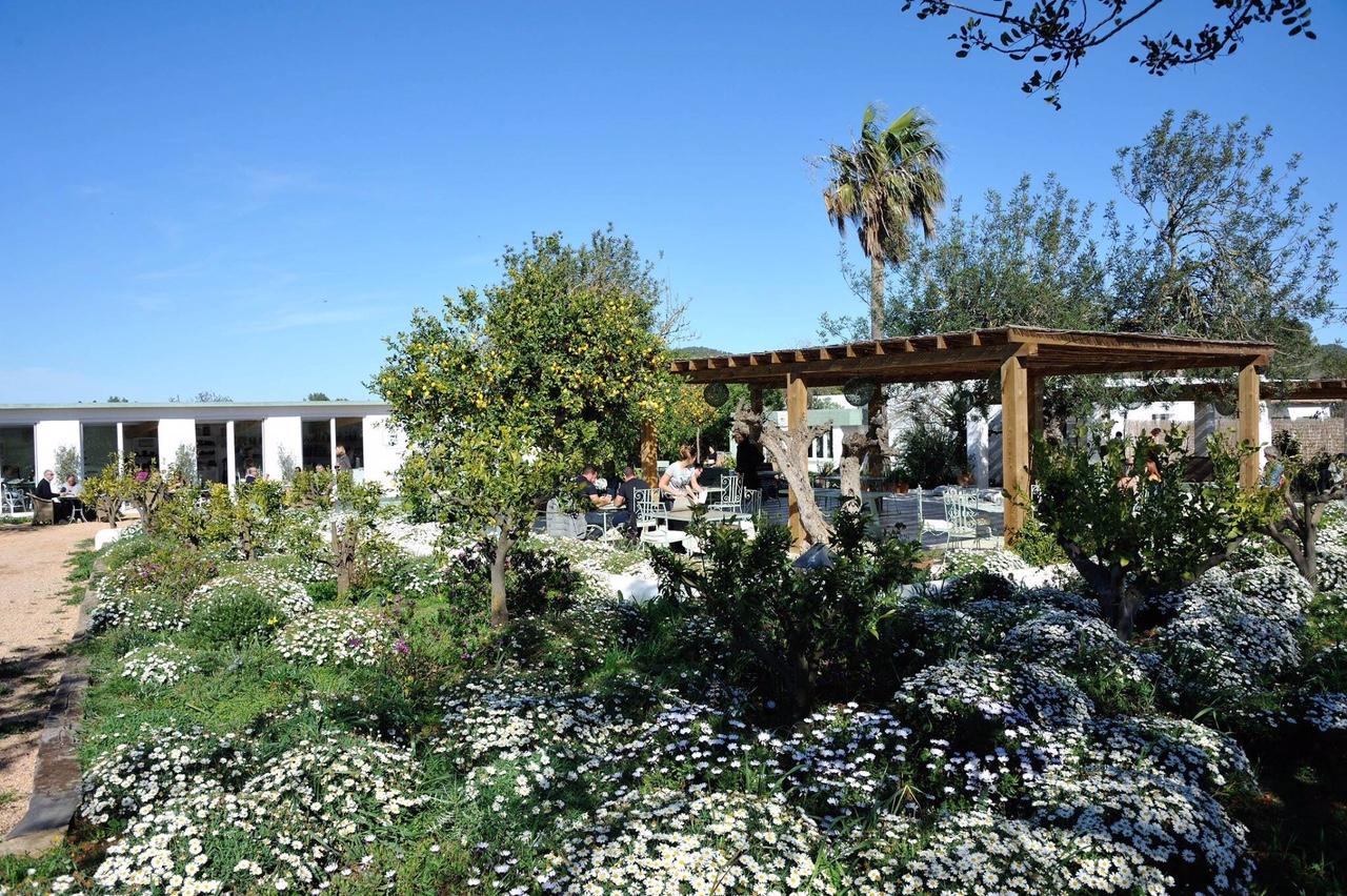 Aubergine Ibiza healthy organic superfood restaurant 6.JPG