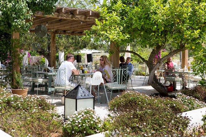 Aubergine Ibiza 12.JPG