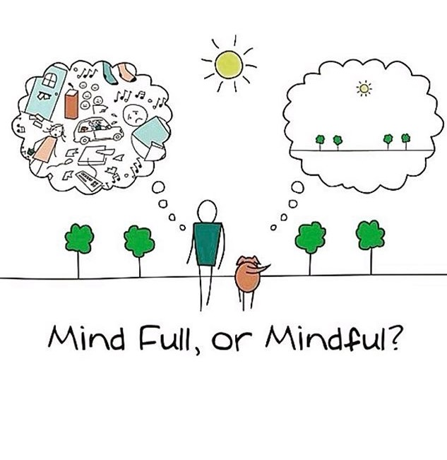 Mindfulness Training Ibiza