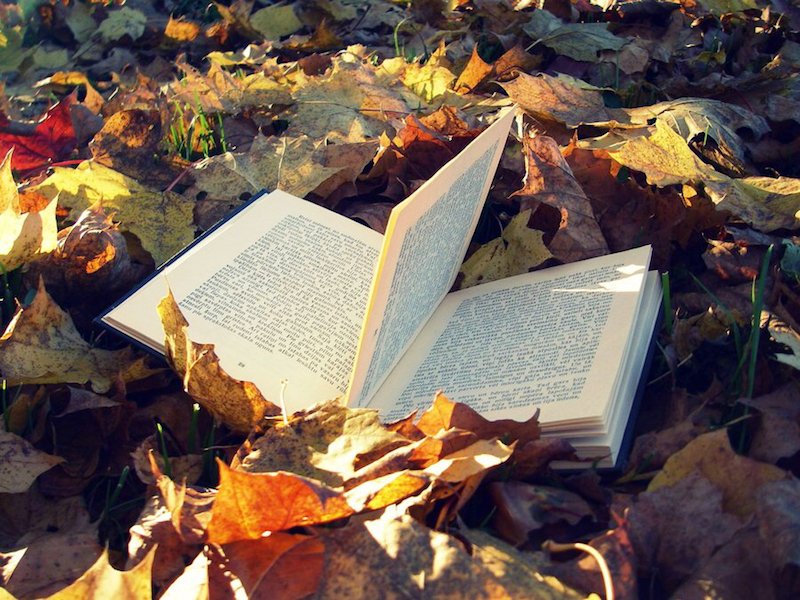 Inspiring books to read this autumn