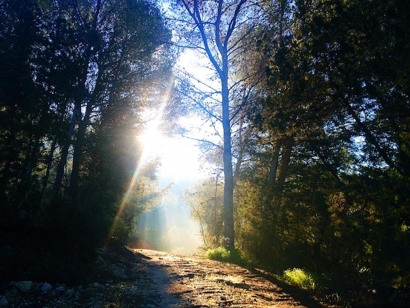 Ibiza autumn hike