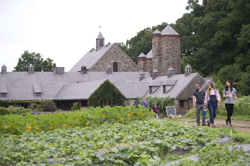Stone Barns Center for Food and Agriculture (Photo By Ben Hider)