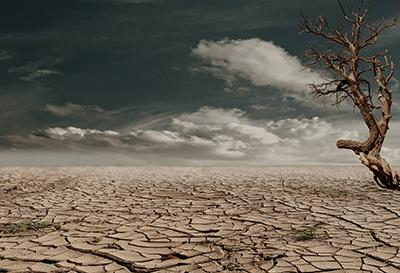 Cracked earth.jpg