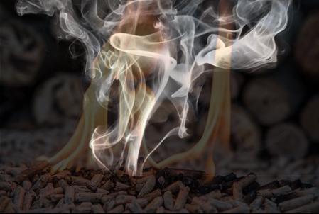 Wood Pellet burning.JPG