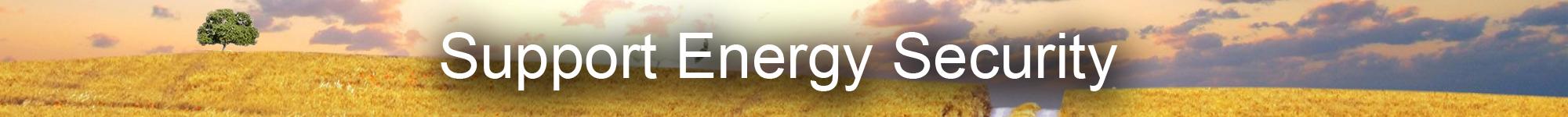 energySecurity.jpg