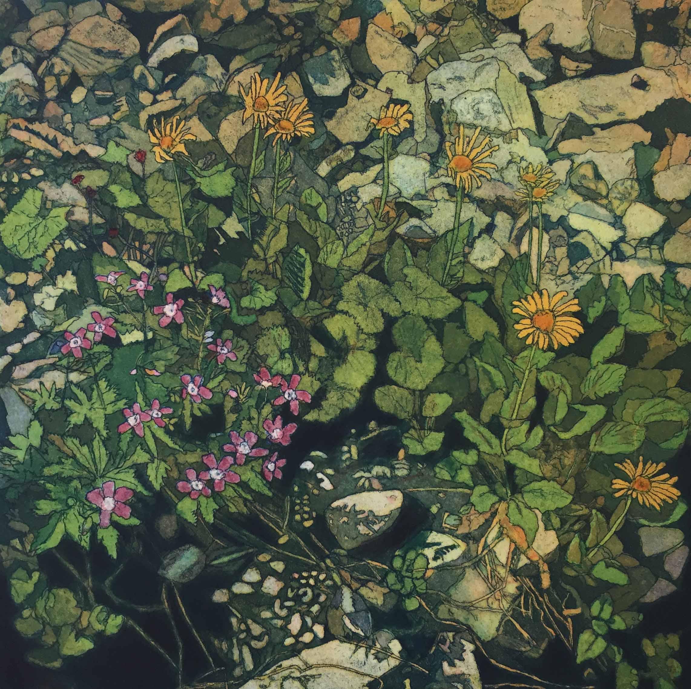 World Views III: Swiss Wildflowers