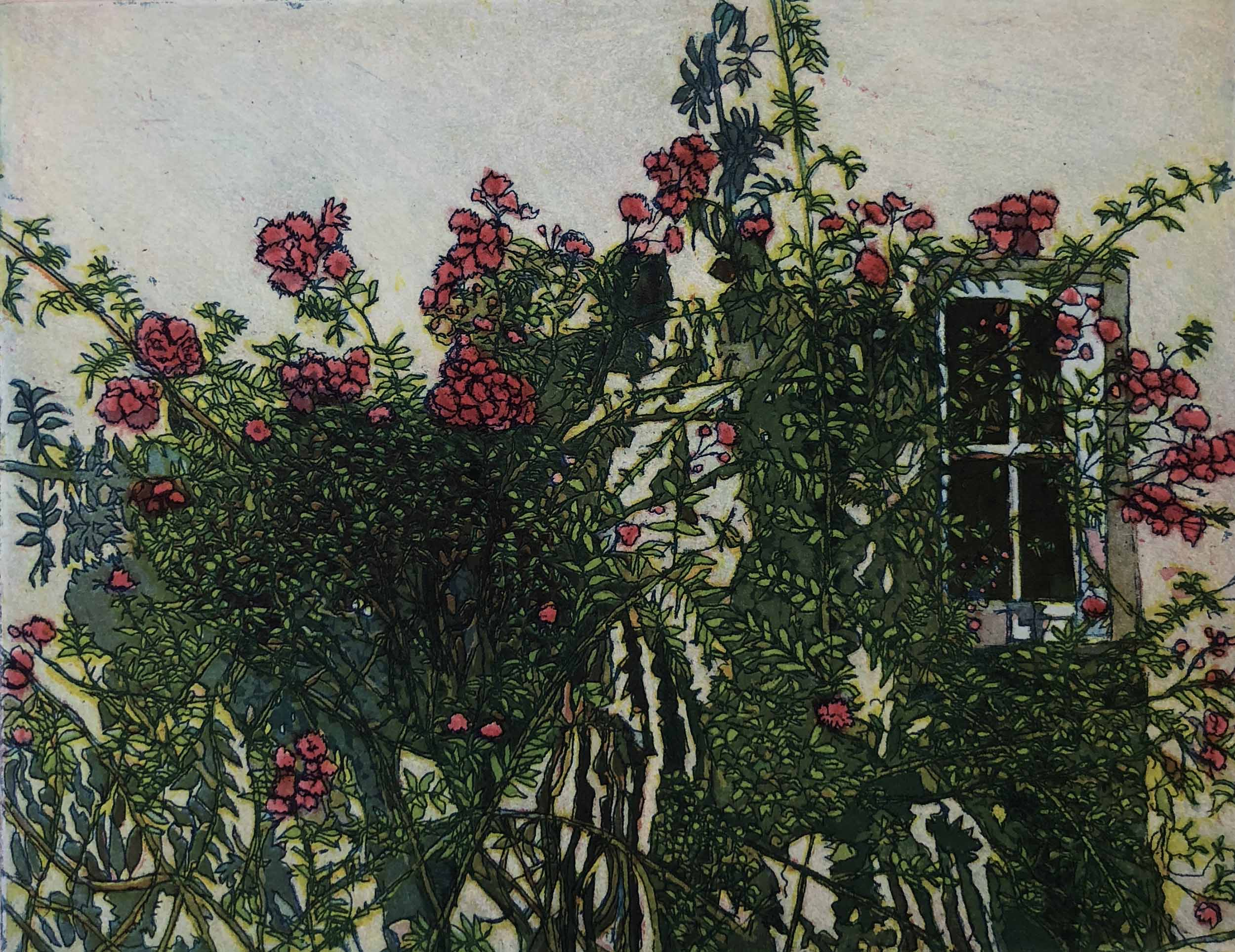 Travel Visions III: Wall of Roses ( Irland)