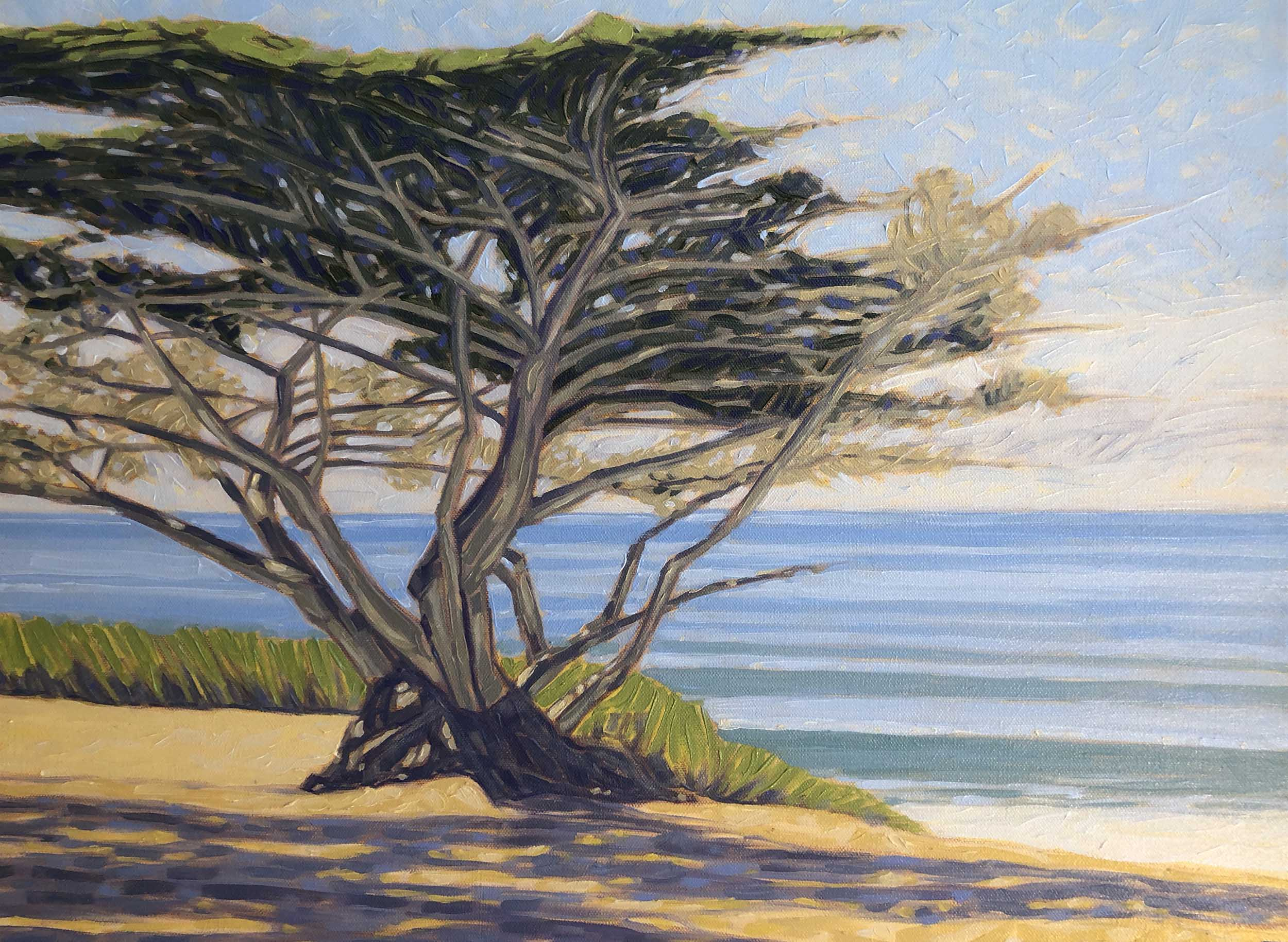 Cypress by the Sea