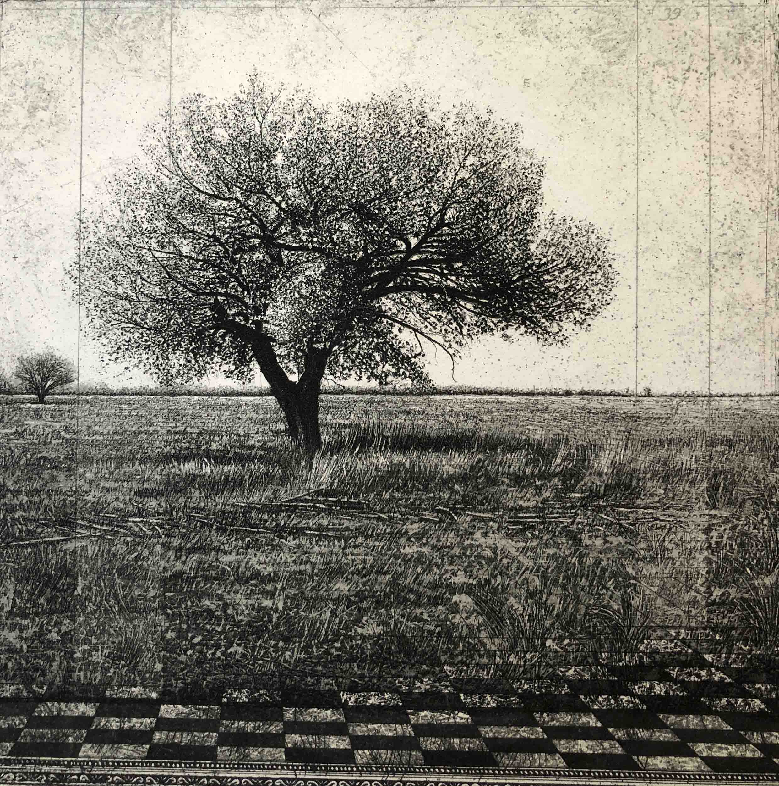 Two Trees with Perspective