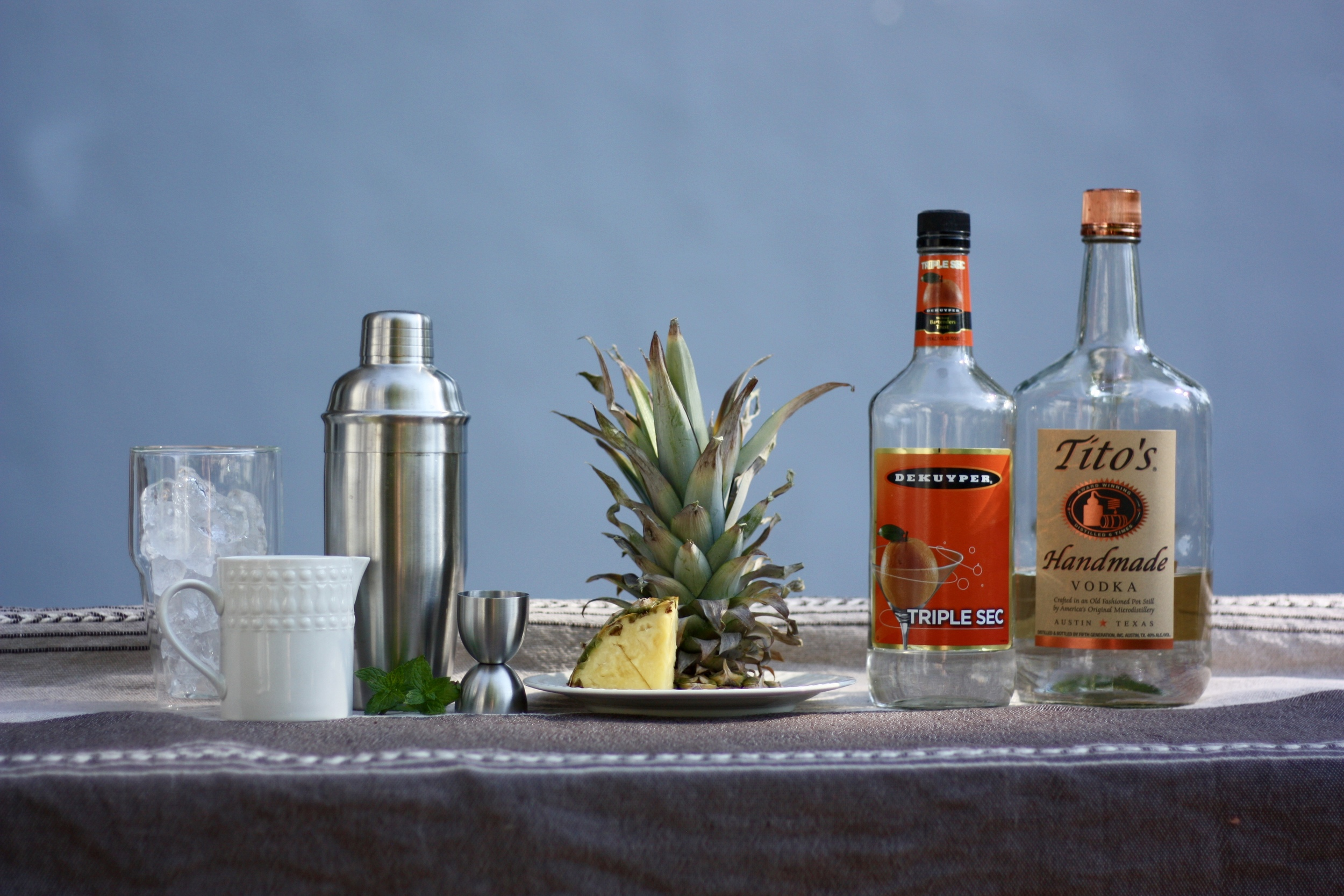 Tito's is my go-to for cocktails with vodka. I also love the Bodum double wall glasses, they're great for keeping your summer drinks cold.