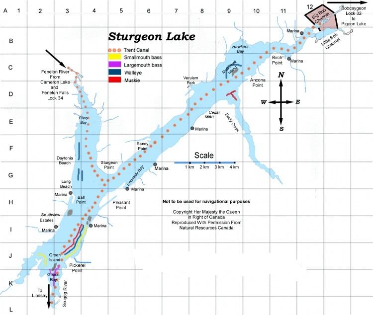 Sturgeon Lake Map.jpg