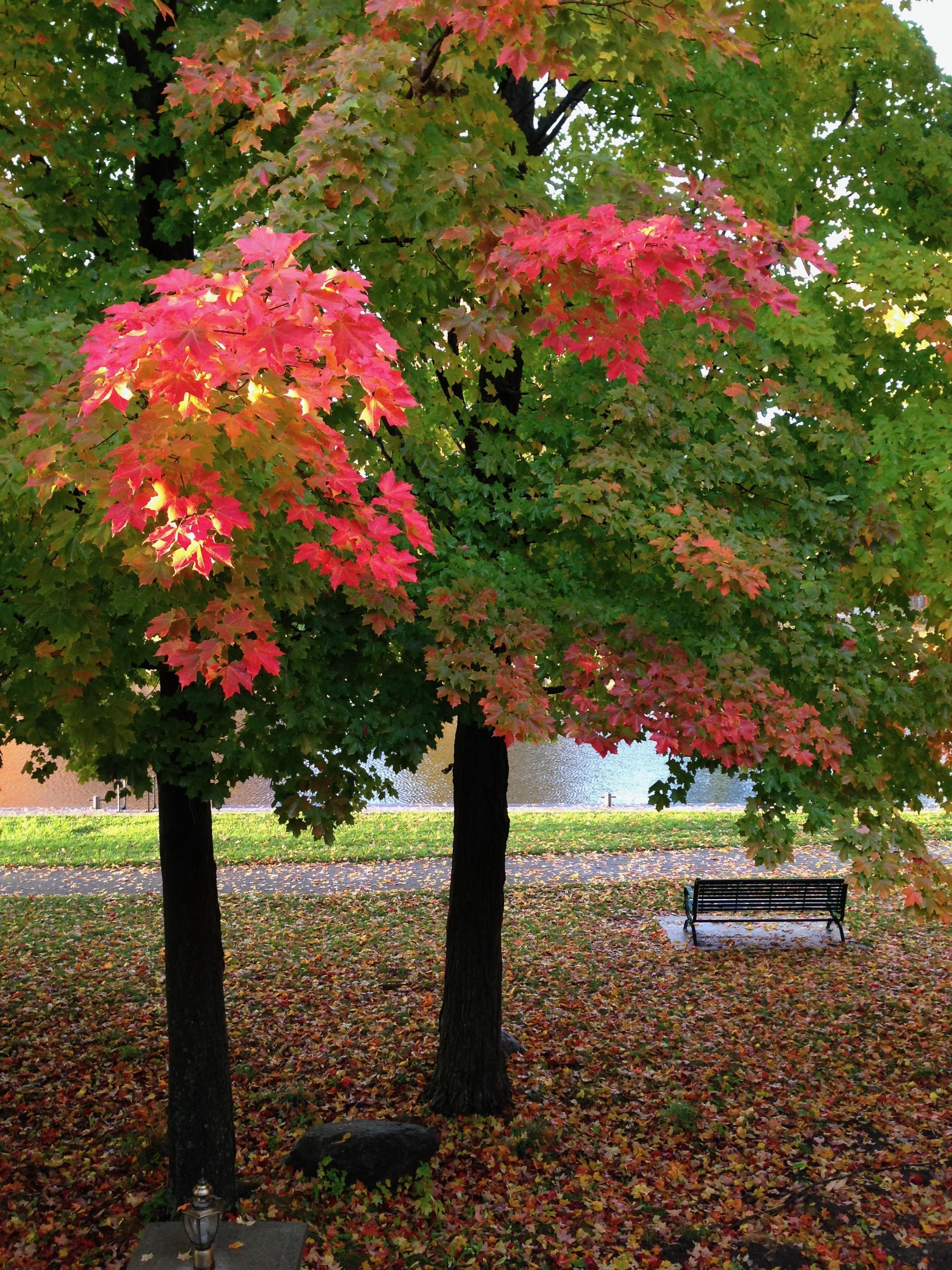 colours #2.jpg