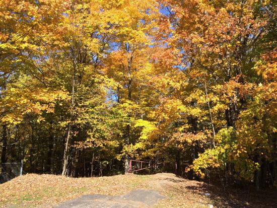 fall panorama the-trail-entrance.jpg