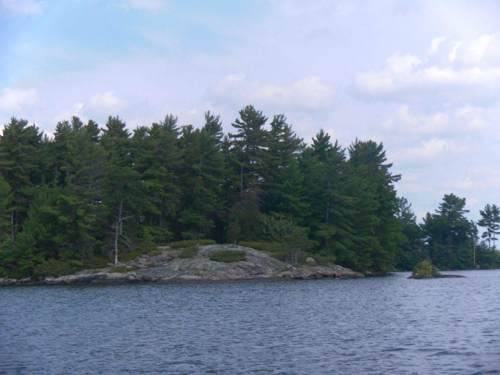 fall boyd island.jpg