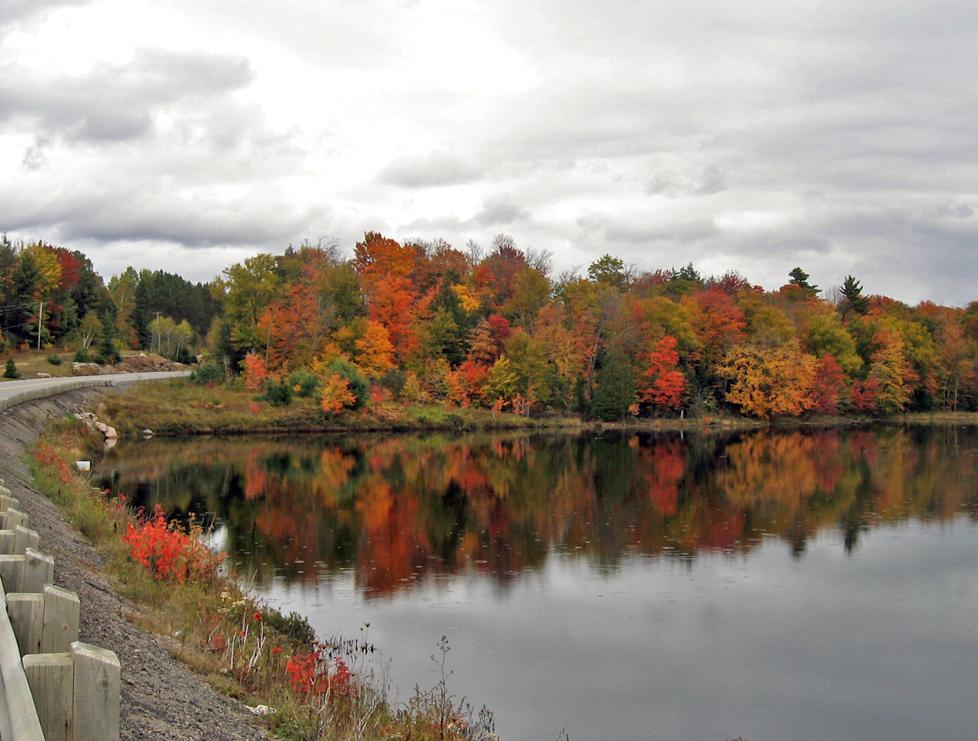 fall haliburton 3.jpg