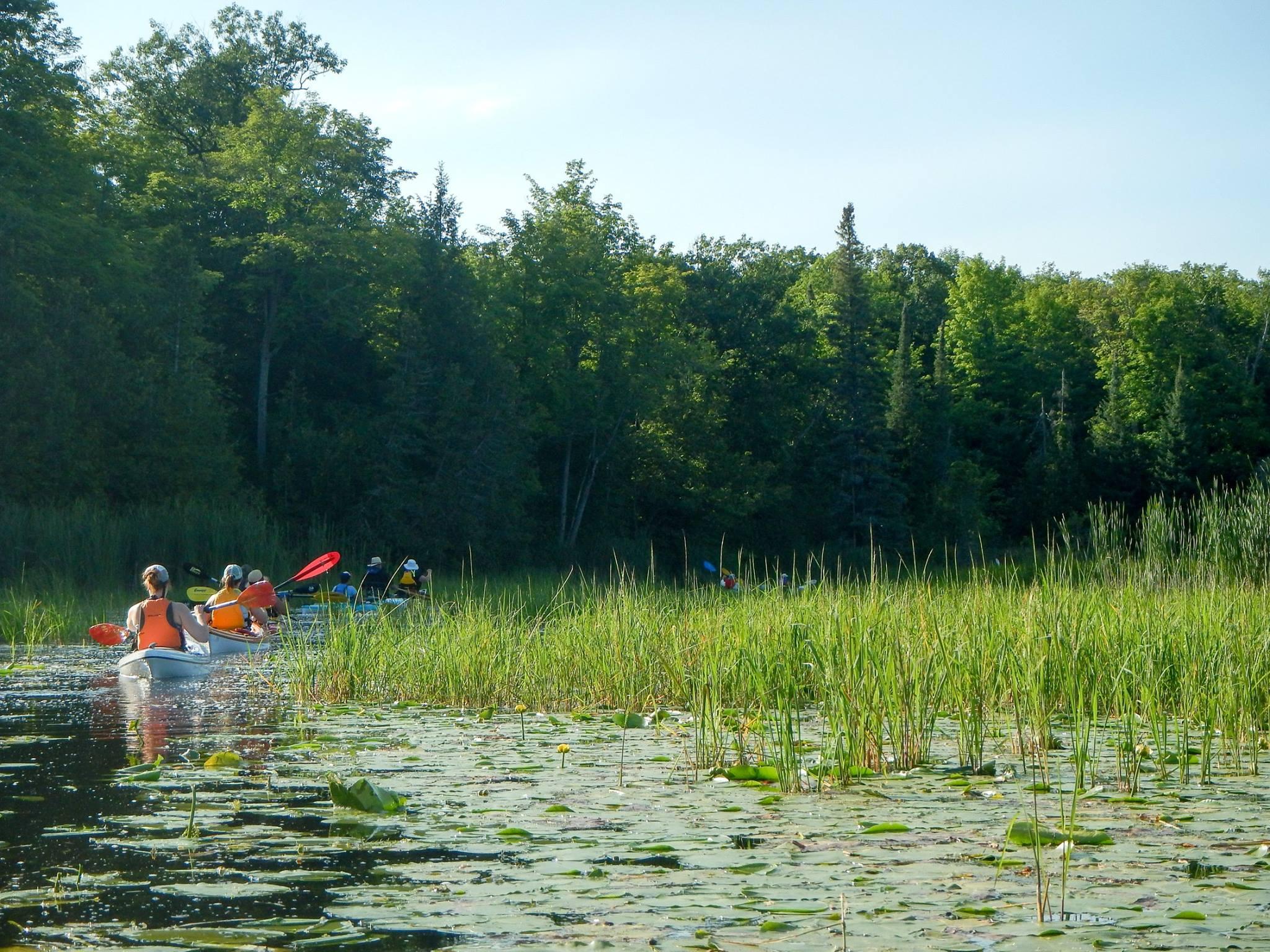 ptbo-paddling-club-1.jpg