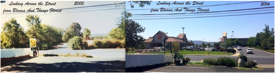 [Above: picture taken from our storefront looking across the street - 2000 vs 2014]