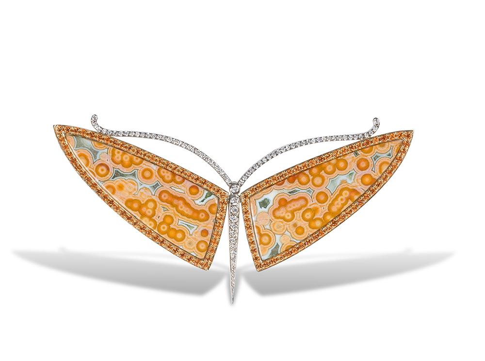 Baby Moth