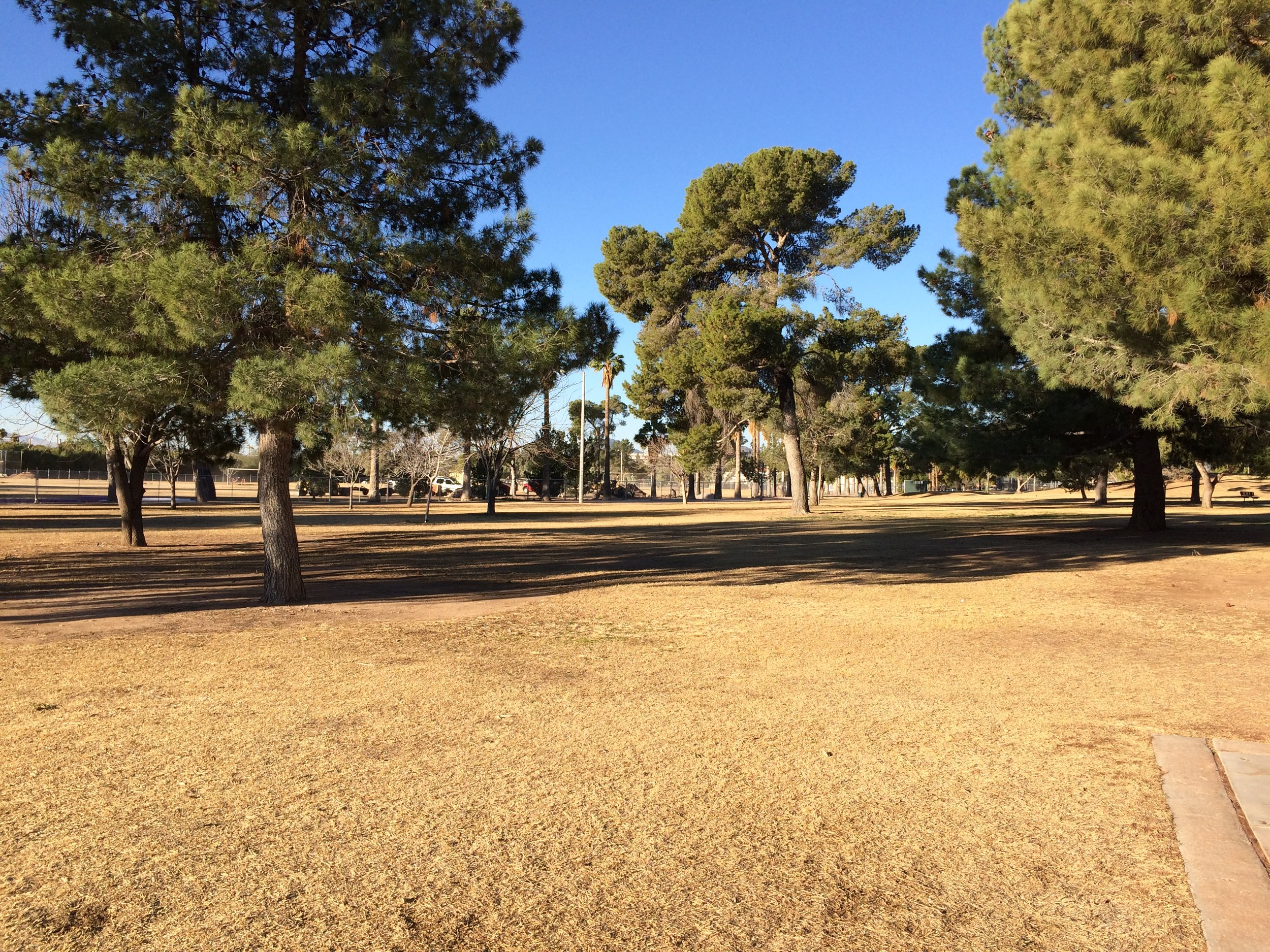 One of many parks in Tucson great for running