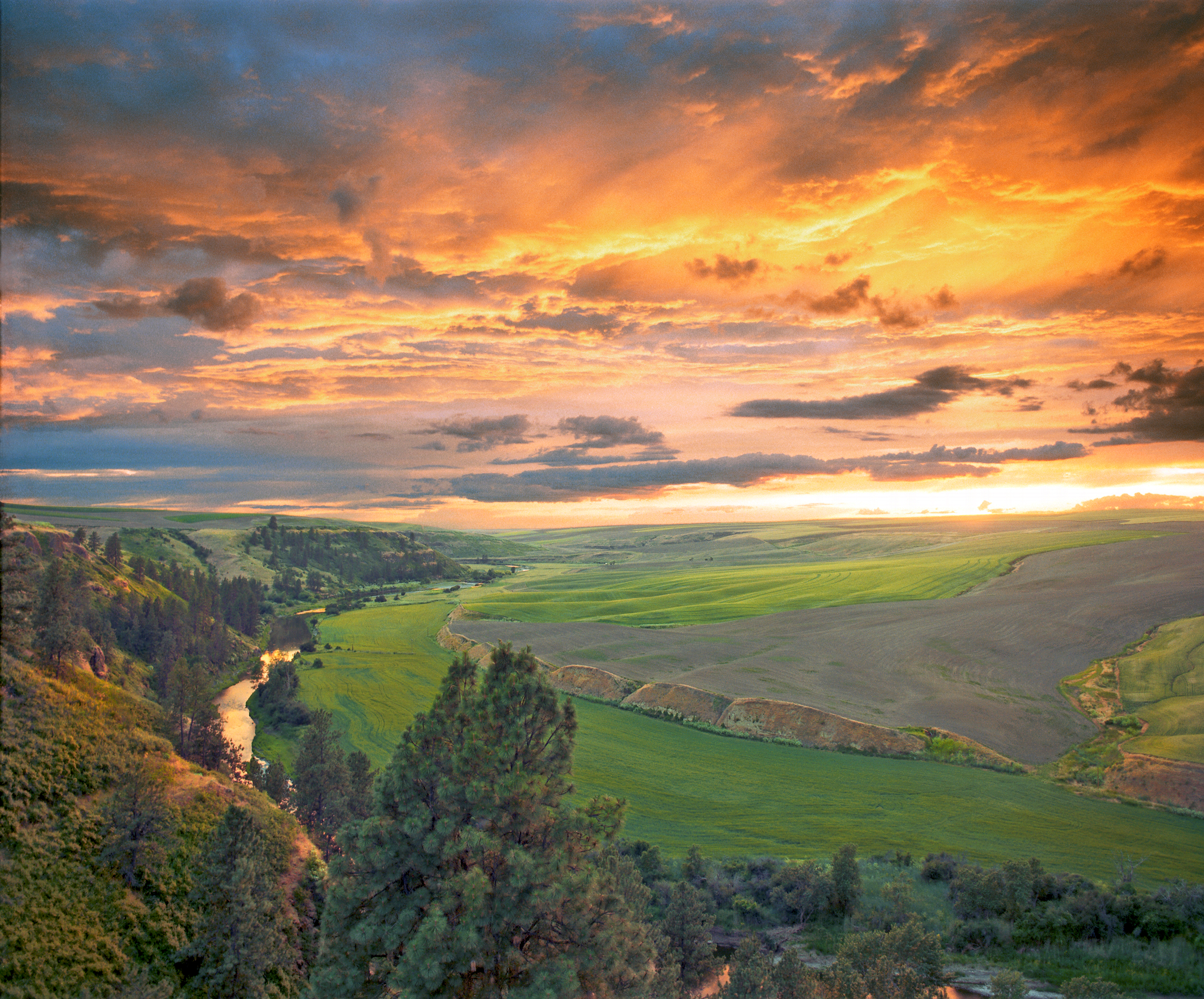 Palouse Colony Sunset.png