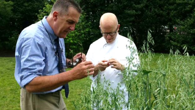 Steve Jones and Dan Barber inspecting White House Lincoln Oats Hannalore Suderman photo