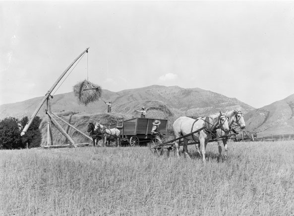 George W. Ackerman,  Unloading Wheat  (1925) and  Harvesting Wheat in Kansas  (c. 1925);   Agricultural Extension Service Photograph Collection, National Archives and Records Center