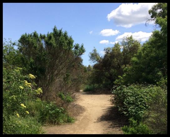 Original El Camino Real Route, near San Juan Batista Mission, San Juan Bautista, California