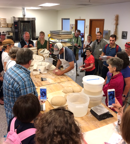 Bread and Cracker Making in WSU/Mt. Vernon's New Bread Lab