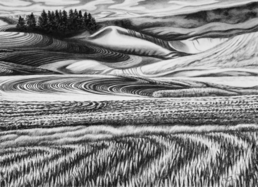 Katherine Nelson,  Palouse Harvest Oasis  (2015),   Charcoal on paper, 22 x 30 inches,   Collection of the Artist