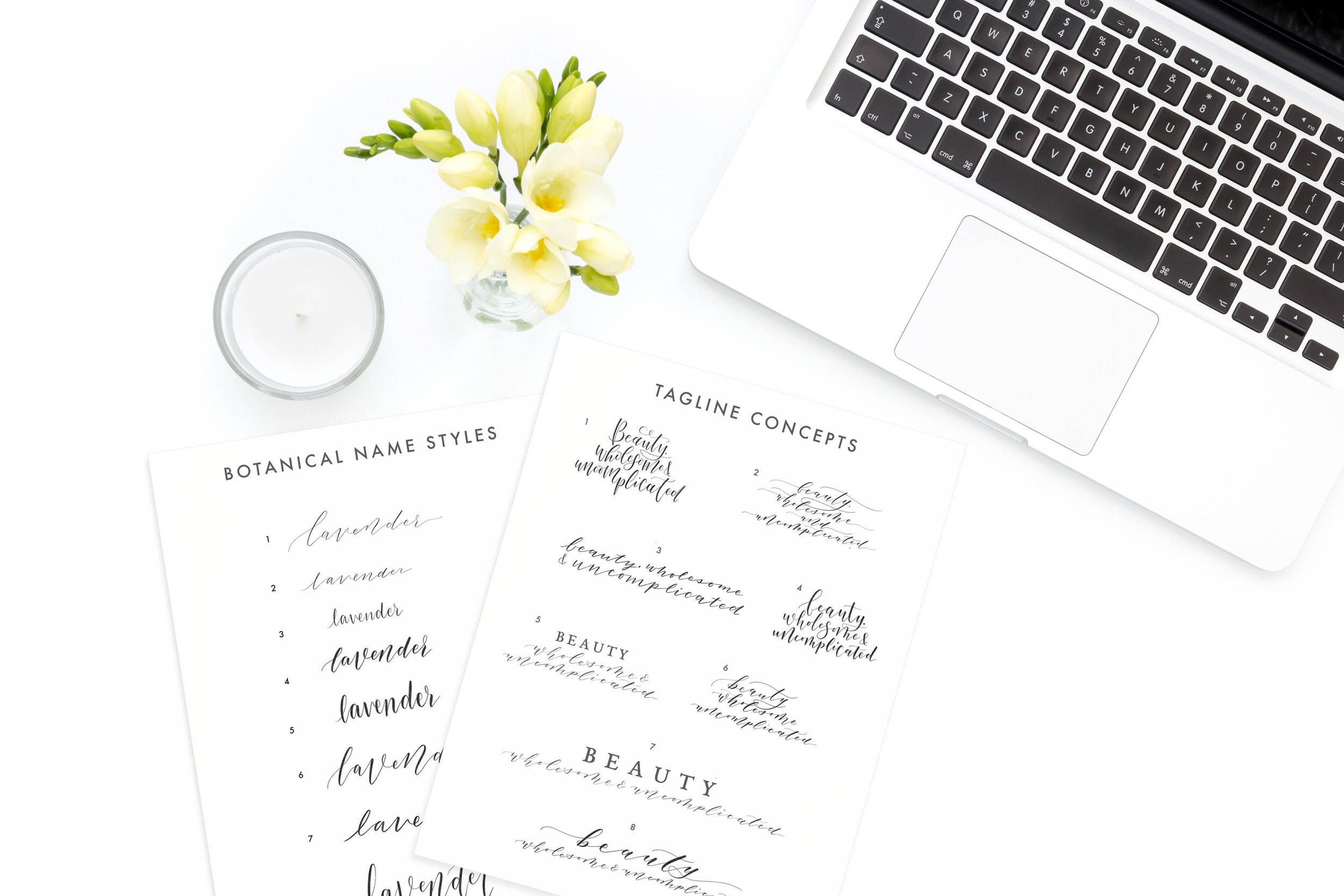 Copy of Vector Botanical Names, Custom Client Work