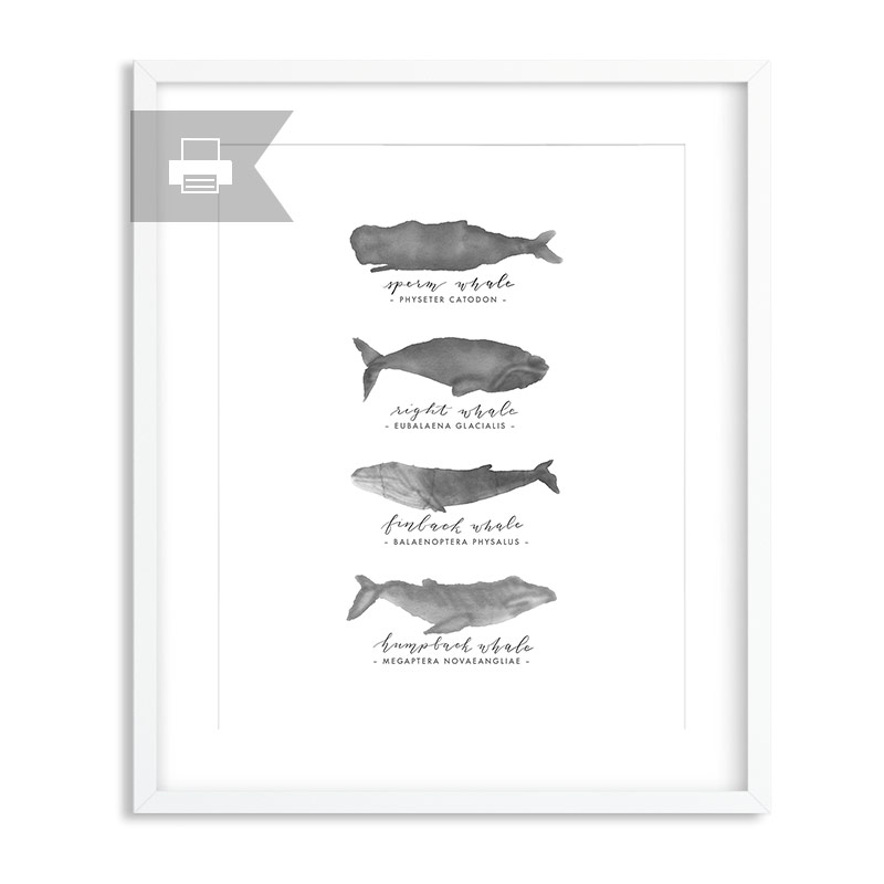 whales-printable-product-pic.jpg