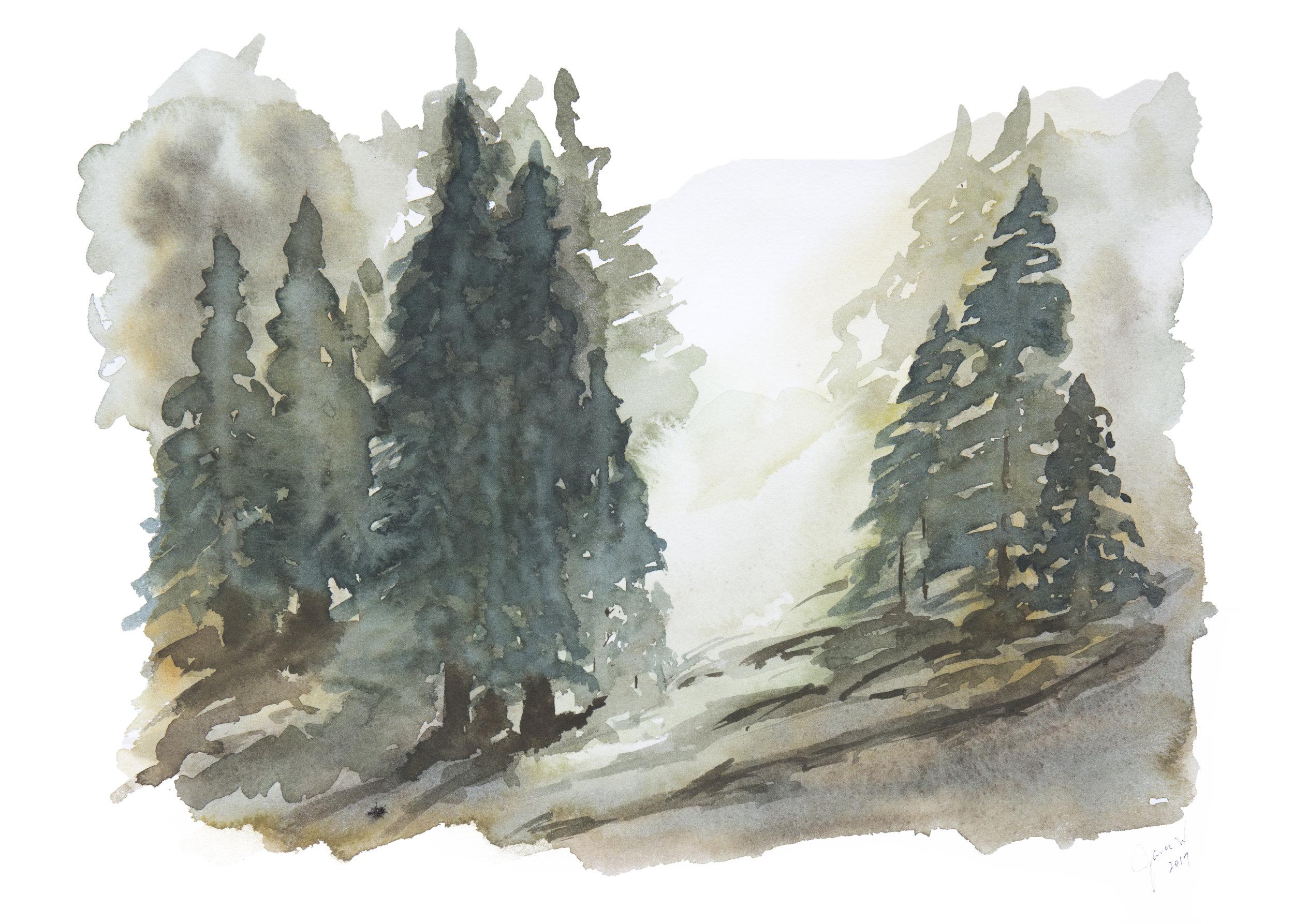 treebreak.jpg