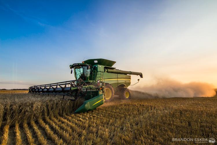 aug30-16_schaan_farm_harvest_combine_sunset-0106.jpg