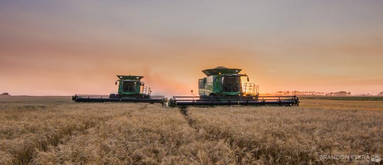 aug30-16_schaan_farm_harvest_combine_sunset-0256.jpg