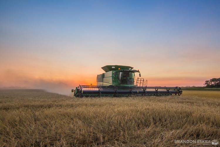 aug30-16_schaan_farm_harvest_combine_sunset-0313.jpg