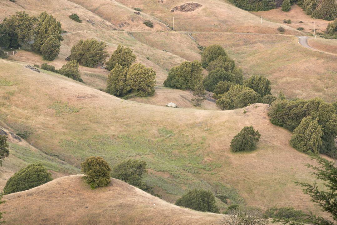 Toscana Americana