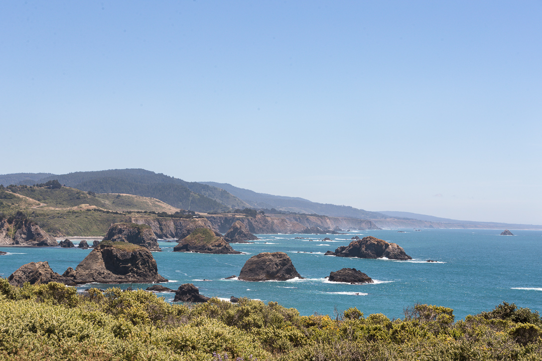 Gorgeous NorCal Coast