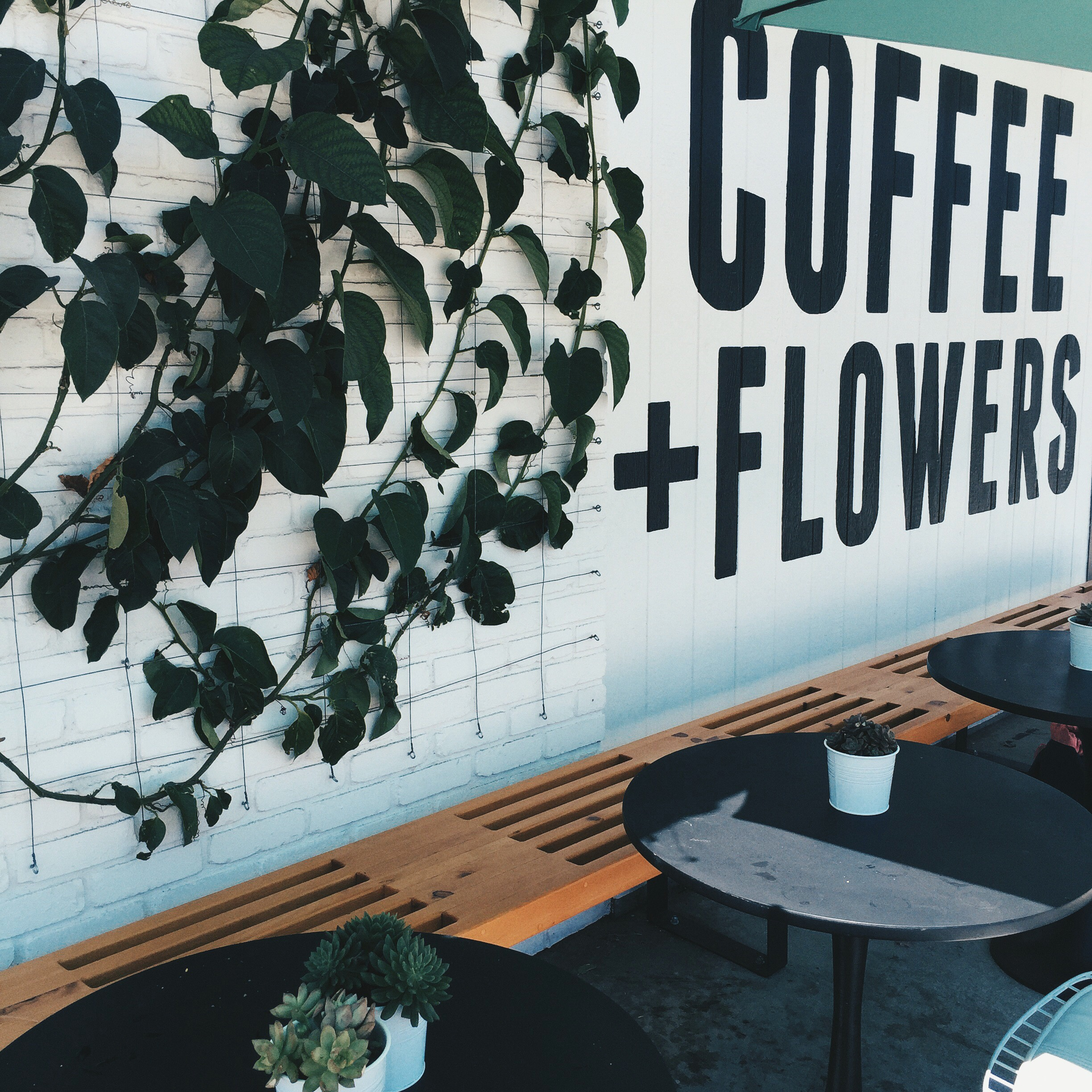 This cute place was called Coffee+Flowers. Two of my favorite things in one place! They had florists working side by side with baristas. What a dream! I tried the avocado toast and their iced Americano. Delicious. The shop was also connected to a nursery on the other side, and I was very tempted to take some succulent friends home.