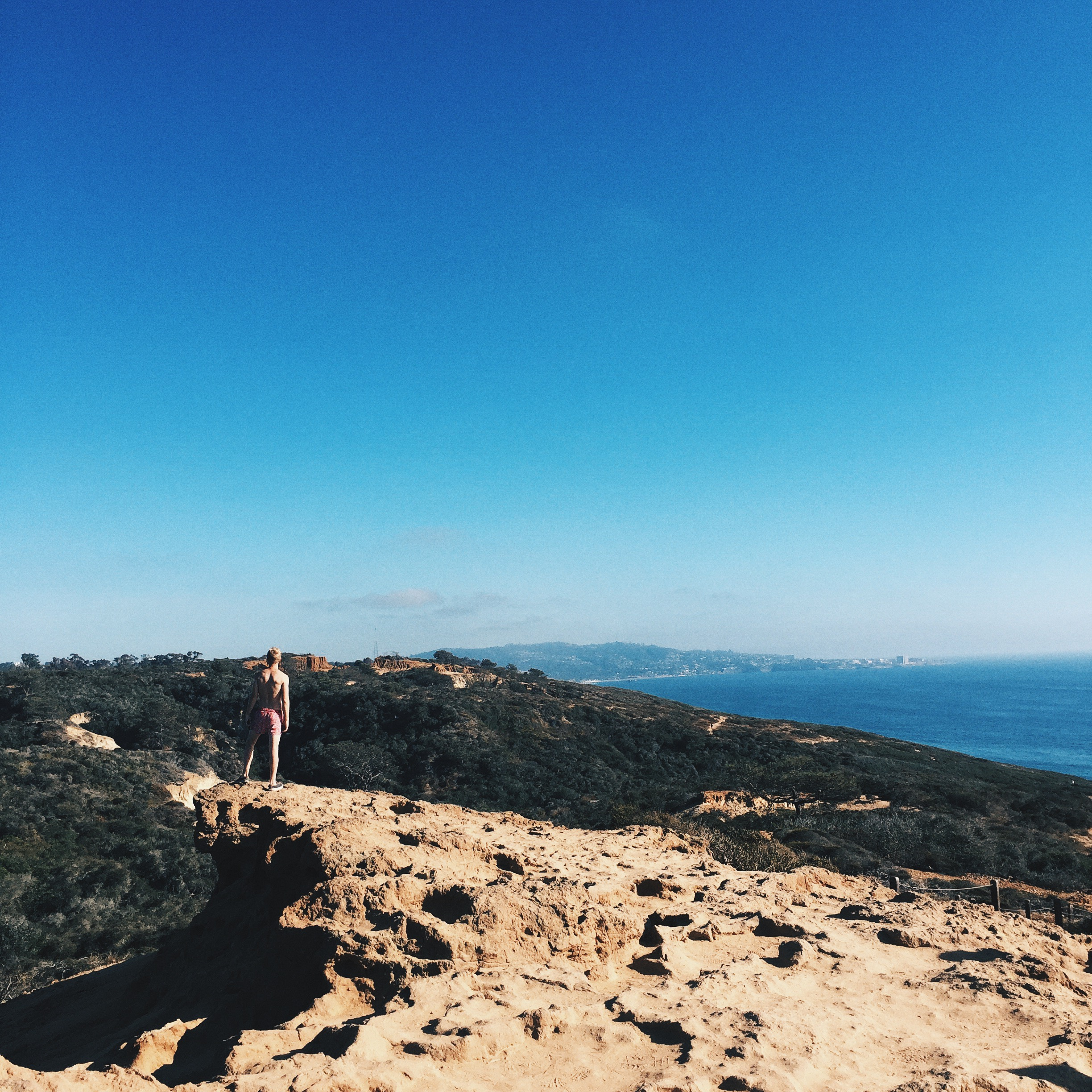 Then we went on the incredible Torrey Pines Trail hike. This trail has you weaving up and down cliffs, eventually leading you back down to the beach. It is now one of my all time favorite hikes.