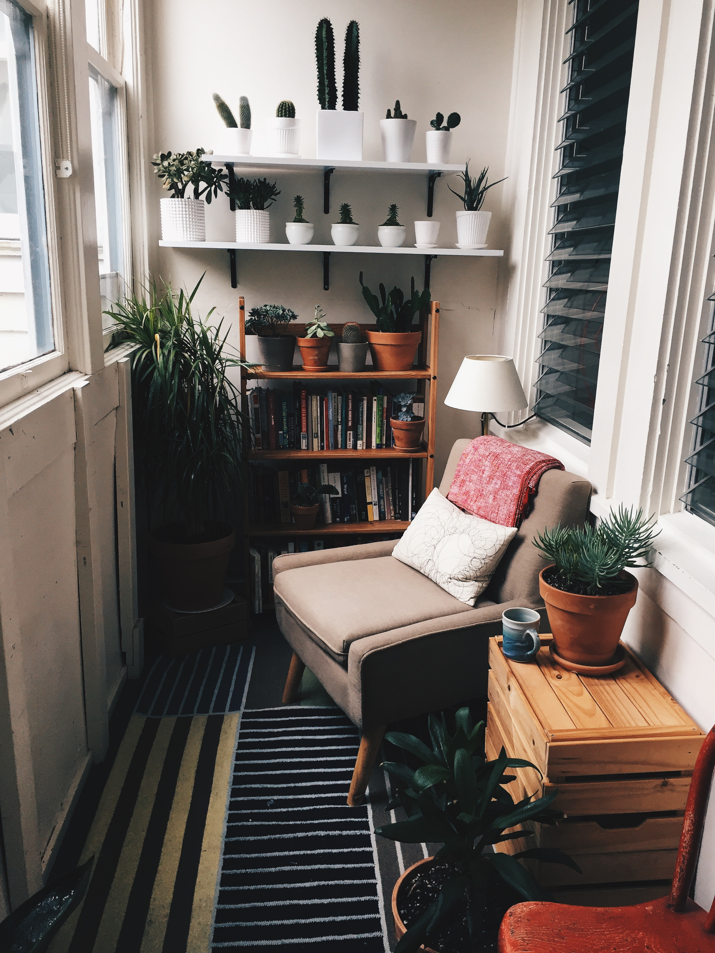 Attached to the kitchen is the cutest little sunroom. This is where I can usually find Harper reading a book. It is also home to our little plant family.