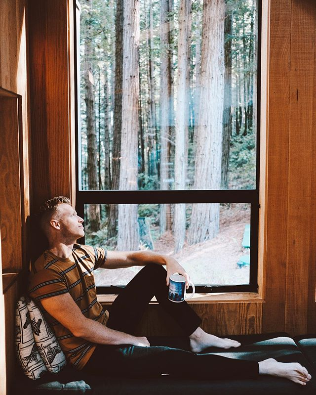 Found the coziest corner in the redwoods 🌲🌲 But like, who else needs a coffee refill already ☕️😌