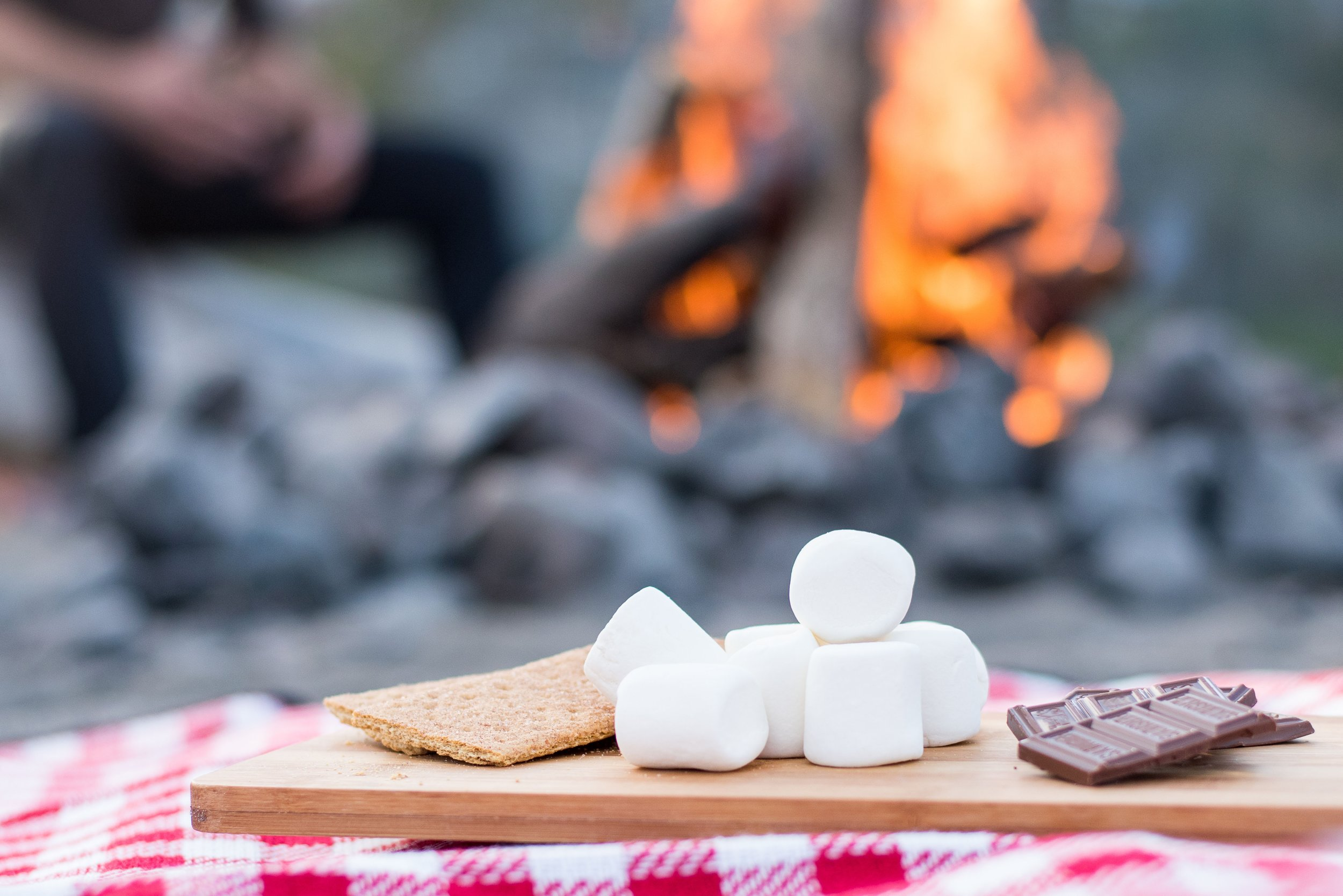 Build Your Own S'Mores - Because no party is complete without some dessert :)