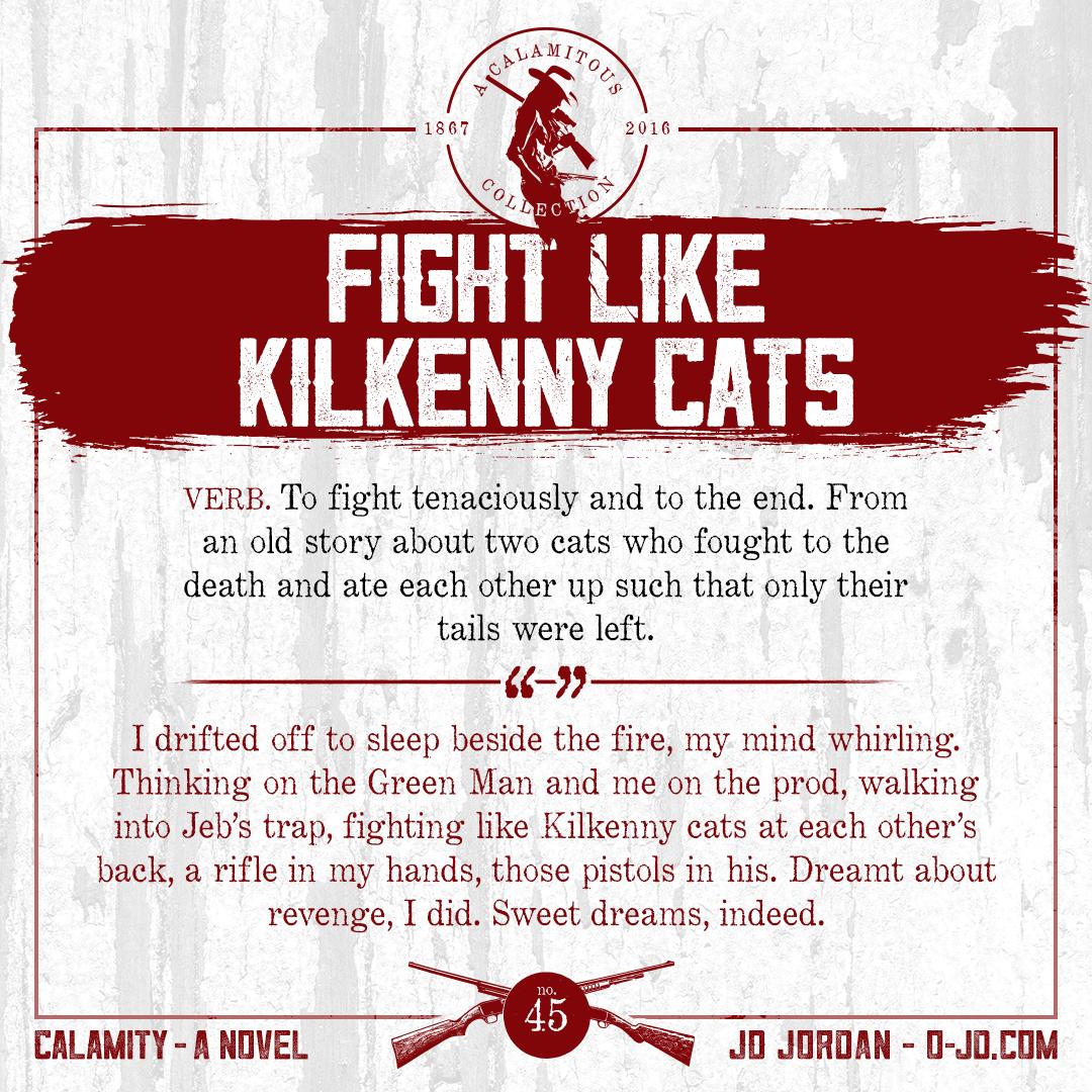 45-fightlikekilkennycats.png