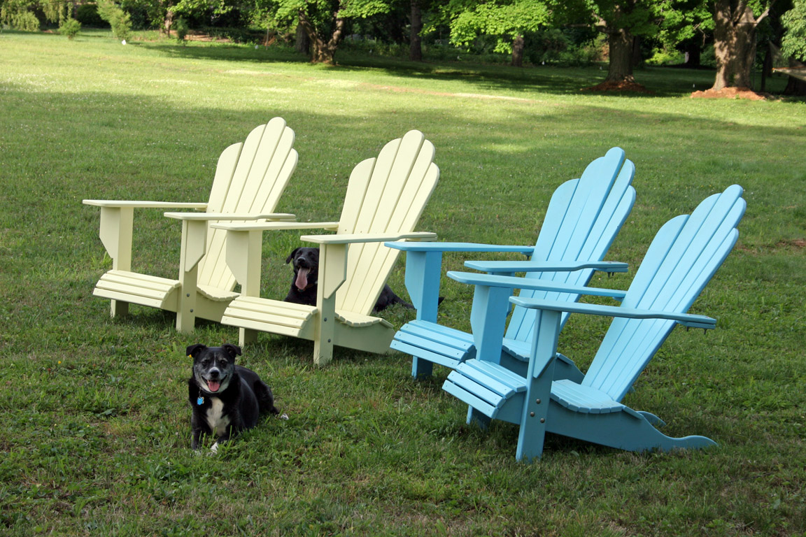 My dogs hanging around a set of adirondack chairs I made.