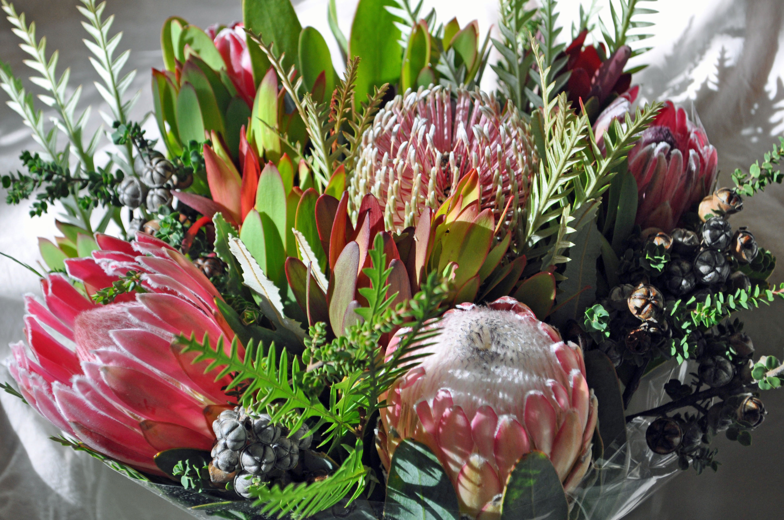 Protea Premium Package $975 plus tax - This premium package is for doula care, a 4-week Hospital Birth Preparation Series and a Postpartum 101 For Moms Class.Doula care includes a free Initial consultation in order for you to get to know me and the support I offer, meeting with you for 2 in-home appointments to go over birth planning, relaxation techniques and I am also able to show you how to use your space in early labor, labor and birth support, stay with you at least 2 hours after birth and follow-up with a postpartum meeting in your home.The Hospital Birth Preparation Series is a comprehensive class which covers pregnancy, labor preparation, birth plans, comfort measures, understanding common interventions and testing, relaxation techniques, breastfeeding, newborn care and more! Class is designed for you and a support person and meets once a week for 4 weeks.Postpartum 101 For Moms is designed to help you get ready for baby! Putting a postpartum plan in place, healthy meal choices, newborn care, breastfeeding questions and more. Also includes a meal plan and a make and take gift for mom.This package requires a non-refundable deposit of $250 due at contract signing. Hawaii state tax will be added to total. Payment plans are available.
