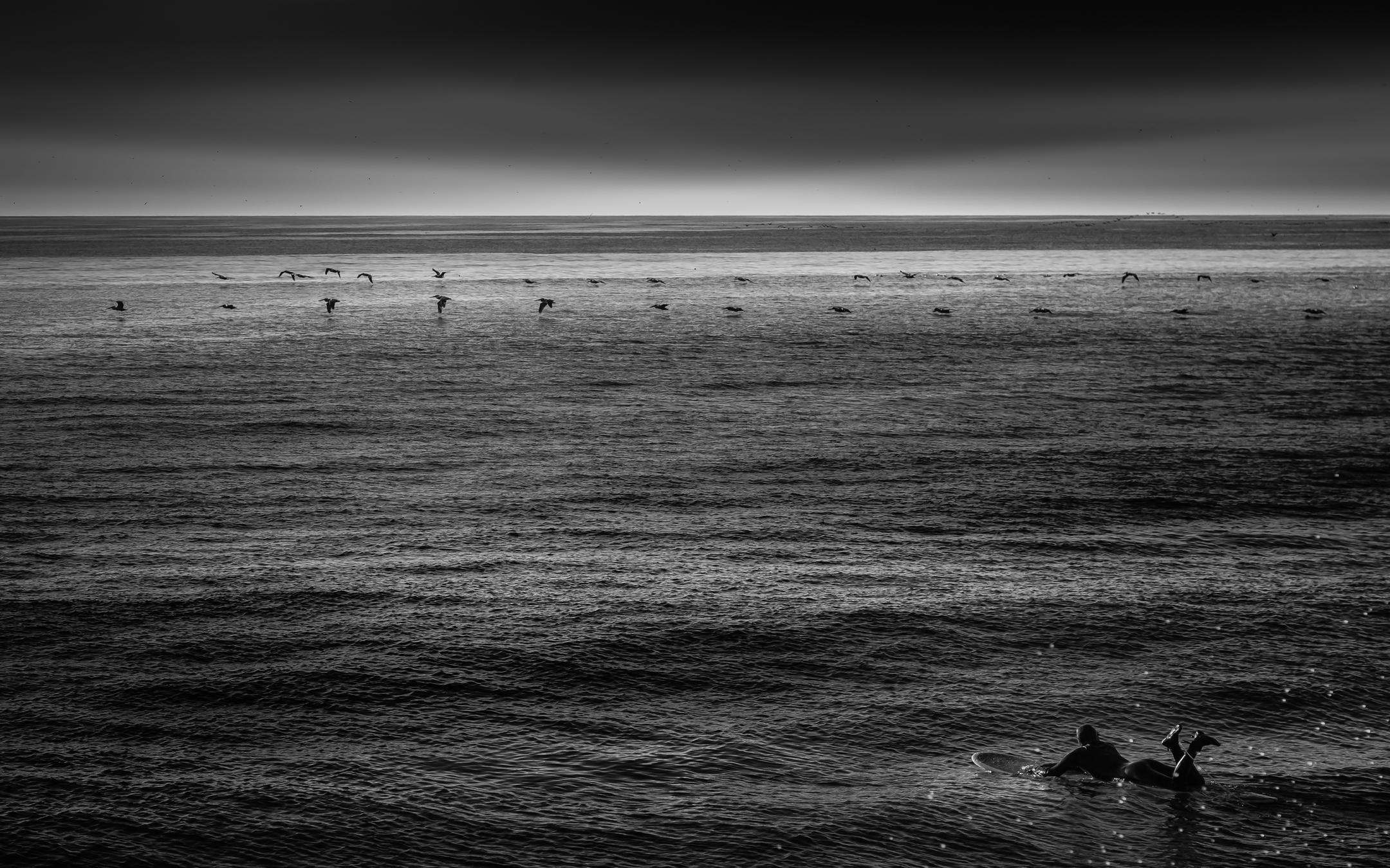 Scotts Creak Beach California