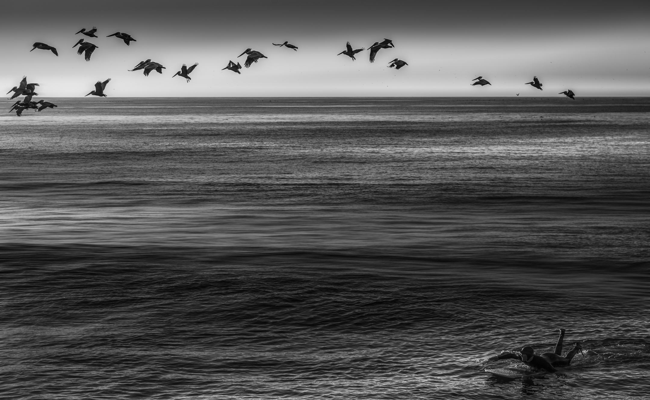 Scotts Creek Beach California